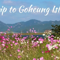 A Road Trip to a Remote Land, Goheung Island