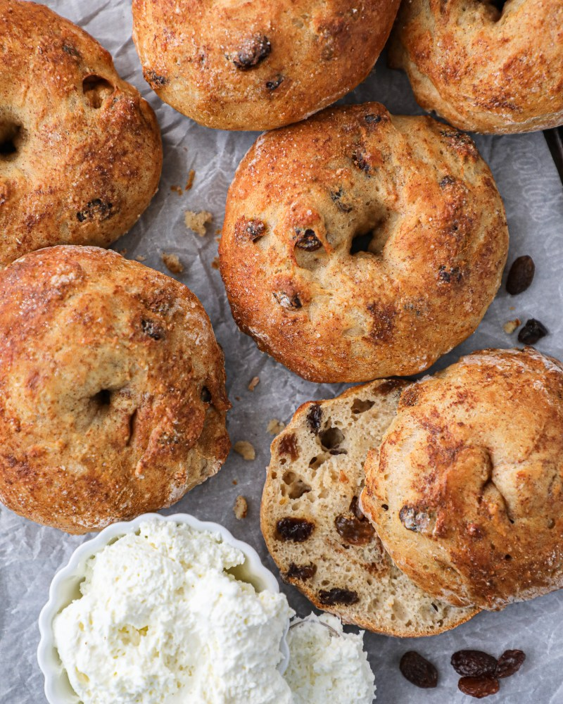 Delicious cinnamon raisin bagels made with bananas and greek yogurt! You won't believe how easy these are to make!