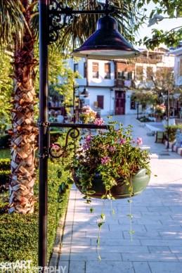pr2009aadl0106 © LEVENT ŞEN