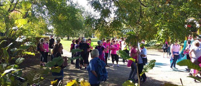 Lutte contre le cancer du sein : les Châtenopyens tous unis pour cette cause