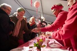 La soupe toujours rose au festival des soupes 2017 de Chalon sur Saône