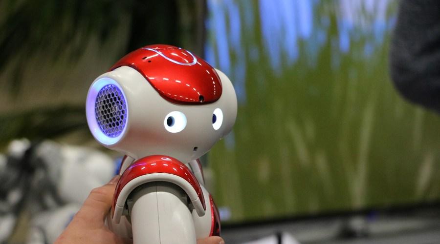 Le robot de l'IUT qui intéragi avec le public au Village des Sciences 2017