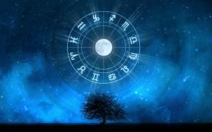 znaki zodiaku na tle gwieździstego nieba wiszące nad drzewem