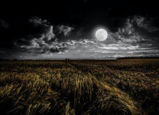 zaćmienie księżyca emma lange