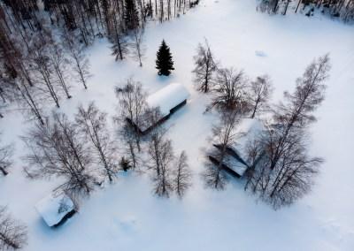 Pieni Viitamäki 03-2018