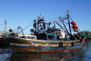 Essaouira, Fischkutter