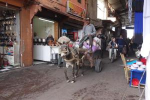 Marrakesh, Transport