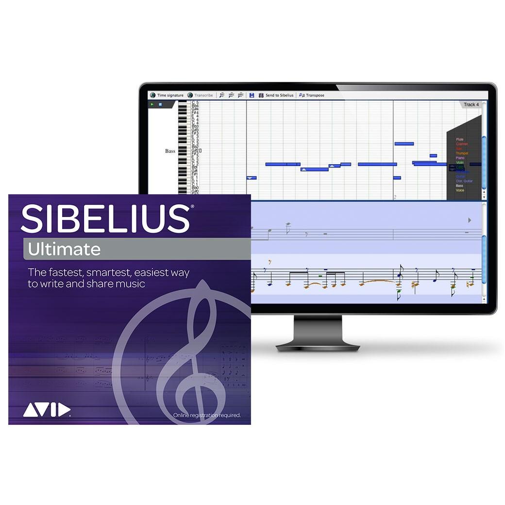 Sibelius crack