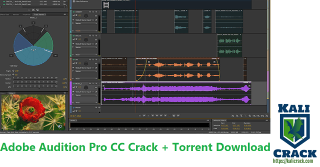 Adobe Audition Pro CC Crack + Torrent Download