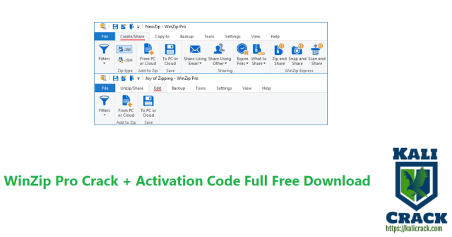 WinZip Pro Crack + Activation Code Full Free Download