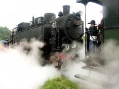 Dampflok Museumsbahnen