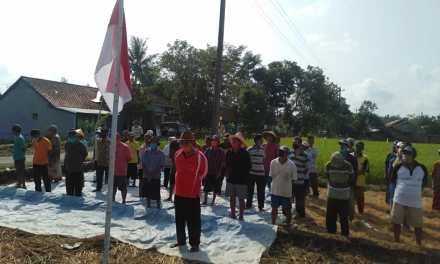 Petani Kubang Manis Peringati HUT RI di Pinggiran Sawah