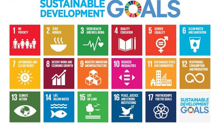 Mengawali April, Pemdes Adakan Pendataan SDGs
