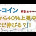 【仮想通貨 ライトコイン(LTC)】底値から40%上昇中。まだまだ伸びる?!今後のシナリオをチャート分析1.13 − アフィリエイト動画まとめ