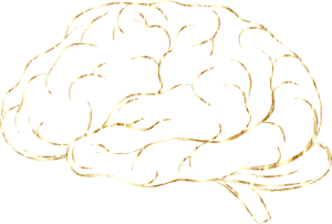 brain-5159706_1280