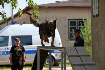 Fot. Komenda Wojewódzka Policji wPoznaniu