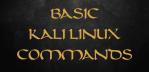 Basic Kali Linux Commands