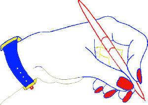 Femme hand holding pen