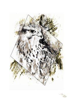 """""""Falco Cherrug"""" (Falke) – HelvEdition by Ka L-O-K"""