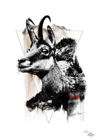 """Rupicapra Rupicapra"" (Alpine Chamois) – HelvEdition by Ka L-O-K"