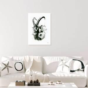 Shop HelvEdition Capra Ibex | Ka L-O-K
