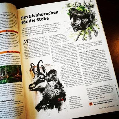 photo_article_tierwelt_1822_Kultur-1_20180531