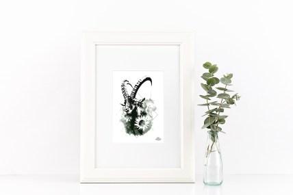 """Mock Up mit der Illustration – """"Der Steinbock"""" – Capra Ibex aus der Bilderserie HelvEdition von Ka L-O-K   Graphic Arts"""