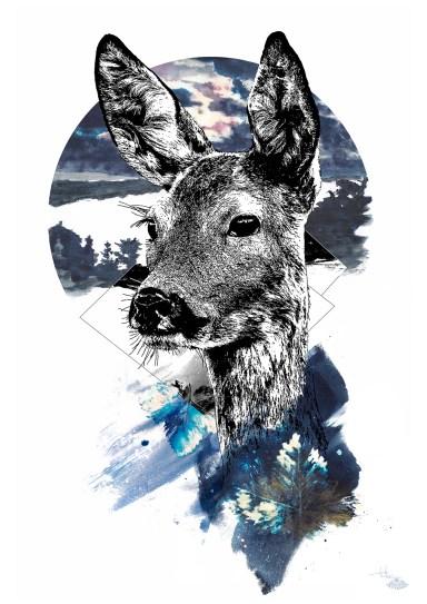 "HelvEdition illustration ""Capreolus_Capreolus"" – the doe (created by Ka L-O-K | 2020, 08)"