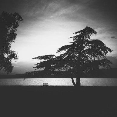 Lake Morat | Murtensee | Lac de Morat