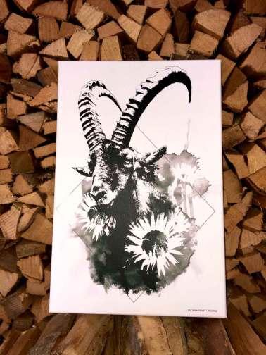 """Capra Ibex"" – HelvEdition | Fine Art Canvas Print, Limited Edition (Detail)"