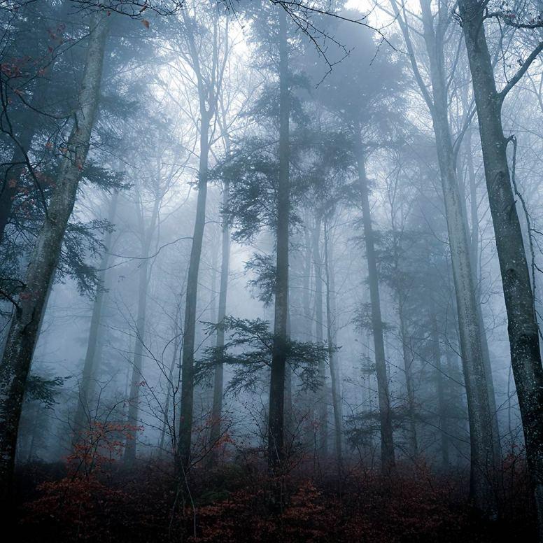 Misty Beauty by Ka L-O-K