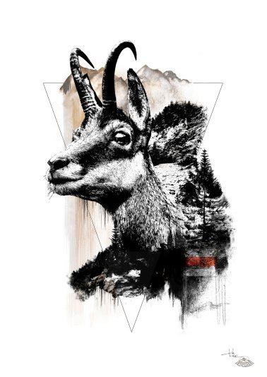 """Rupicapra Rupicapra"" (Gämse) – HelvEdition by Ka L-O-K"