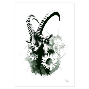 """Capra Ibex"" (Le Bouquetin) – HelvEdition by Ka L-O-K"