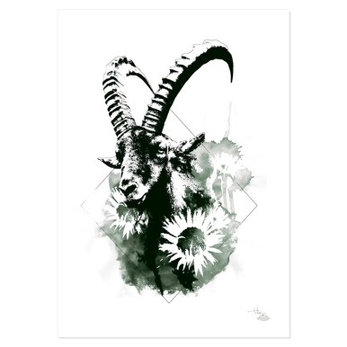 """Der Steinbock"" 