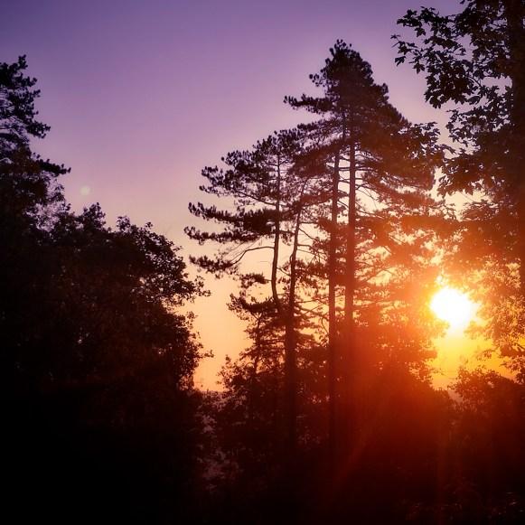 Moody Woods - New Day | Ka L-O-K