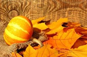 kalona fall festival