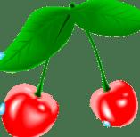 proteiner i frugt