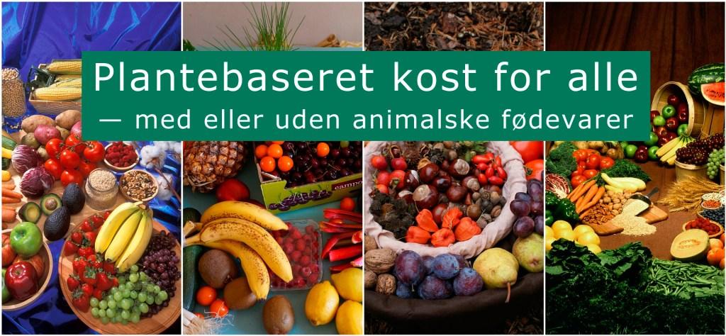 Gruppe for vegetarer på Facebook