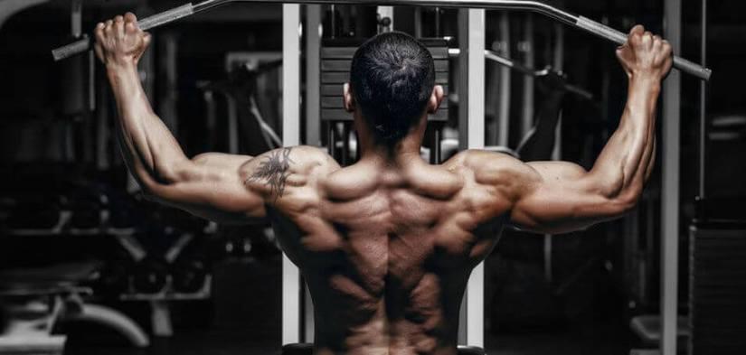 testosterone-user-back