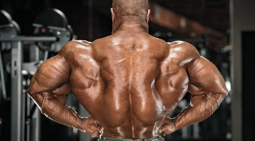 bodybuilder-muscular-back-dbol