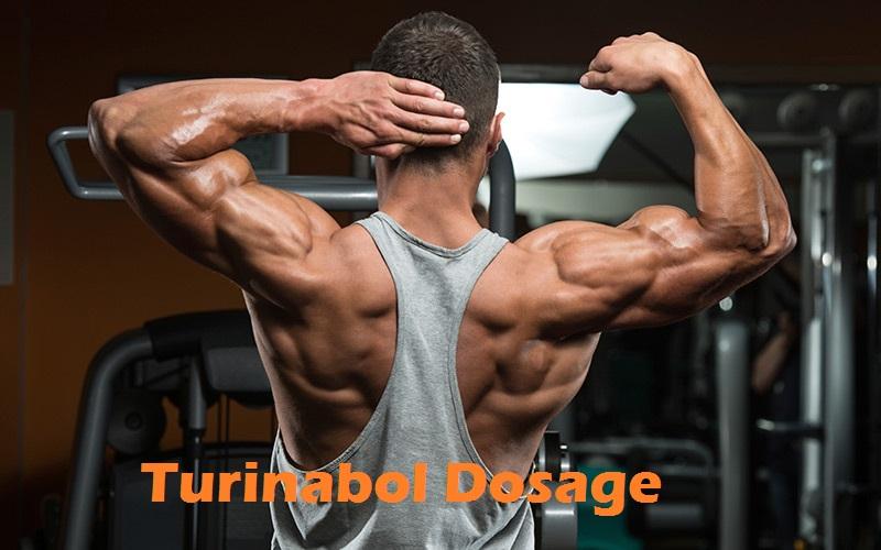 turinabol-dosage-results
