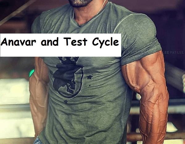 anavar-and-test-cycle