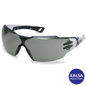 Eye Protection 9198.237 Uvex Supravision Excellence Sunglare Filter CX2