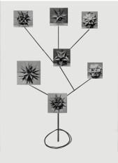 scuplture-armature-3-copy