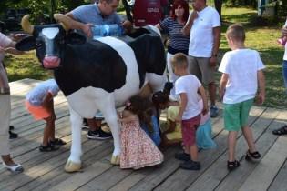 Odpust u św. Rozalii i piknik charytatywny w Barwałdzie Górnym - 1 września 2019 r. - fot. Franciszek Sarapata