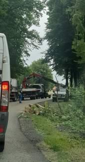 Usuwanie drzewa na Bugaju na drodze przed Klasztorem - fot. Patryk DK 52 info