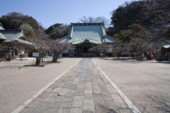 山門を抜けると大殿まで一直線です。左がわに寺務所や大きな会議室のような部屋があり、そこでは僧侶の方々が座学をされていました。