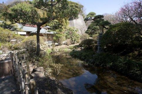 一般参拝客は入ることができませんが、本堂裏手にはきれいな池があります。