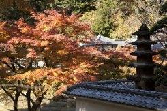 円覚寺は紅葉の季節にはぜひ訪れたい場所です。