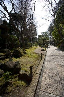 報国寺の境内は良く設計されています。どこを歩いても静かに堪能できます。